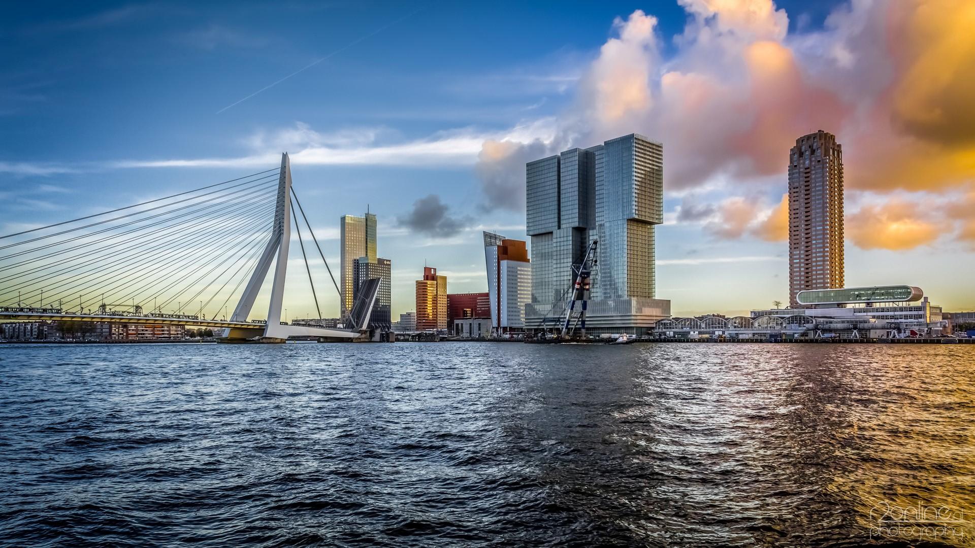 2014-Rotterdam